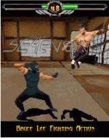 Bruce Lee Iron Fist 3D / Брюс Ли - Железный кулак 3D - java игра
