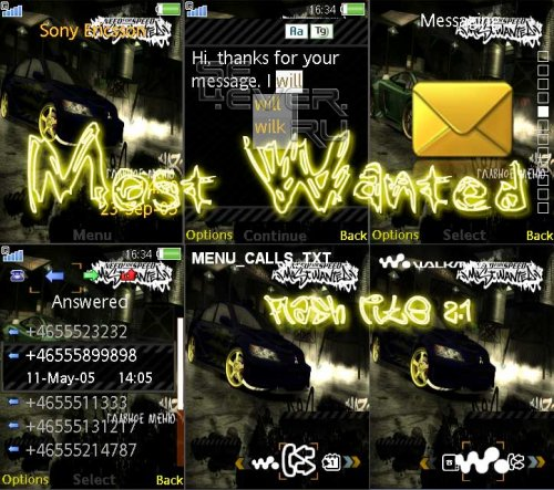 Most Wanted - Flash Theme 2.1