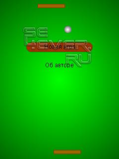 Ping Pong Flash Game