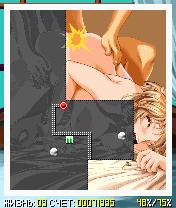 Секс ксоникс: Хентай / Sex Xonix Hentai - Эротическая java игра