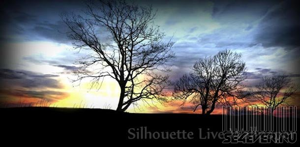 Silhouette Live Wallpaper - Живые обои для Android