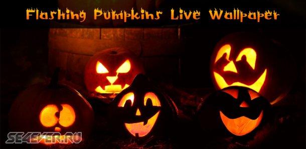Flashing Pumpkins Live Wallpaper - ����� ����